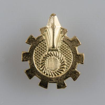 Korpusówka Państwowa Straż Pożarna (Płomyk, Ognik PSP) współczesna, kolor złoty, śruba
